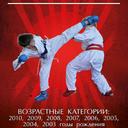 Открытый Чемпионат среди детей 2-6 лет's Cover